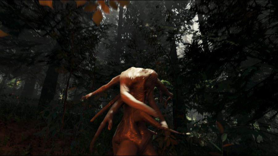 The Forest - Steam Gift Key Screenshot 5