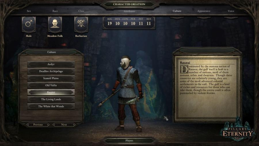 Pillars of Eternity - Hero Edition Screenshot 5