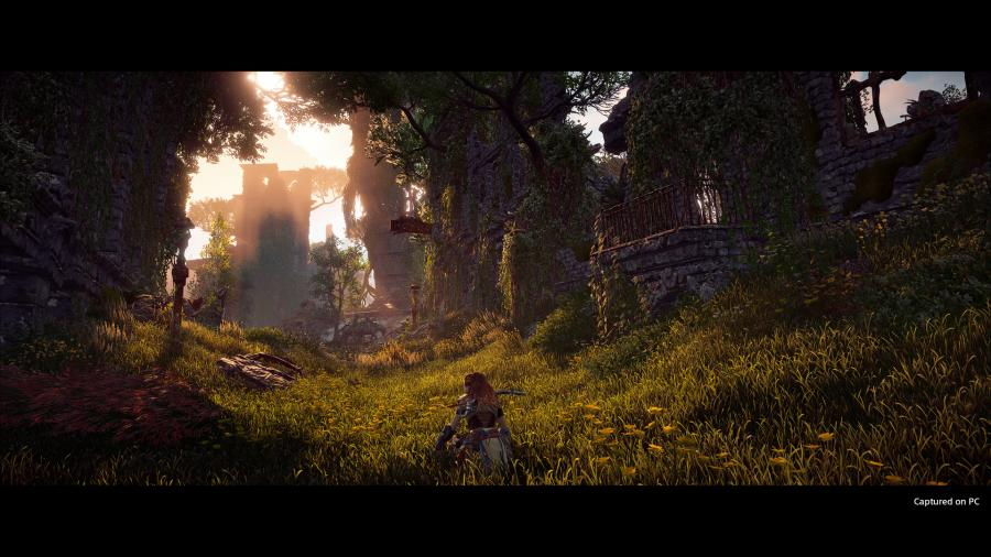 Horizon Zero Dawn - Complete Edition [PC Version] Screenshot 2